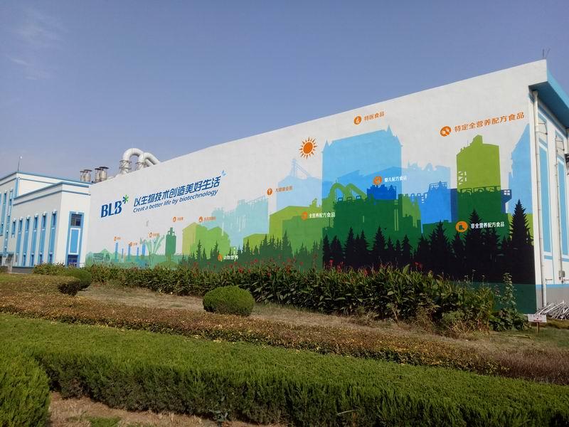 保龄宝企业文化墙彩绘